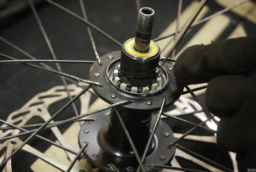 Replacing bearings in the freewheel hub