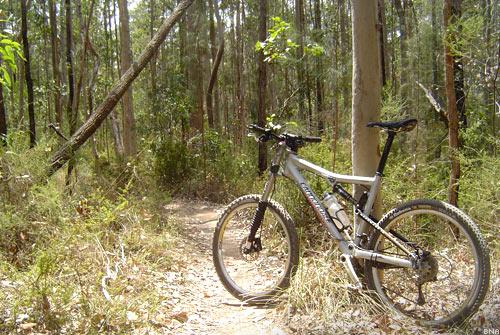 Rubena Mountain Bike Tyres