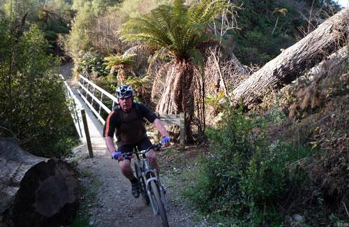 Bruce Jaine Huka Falls MTB