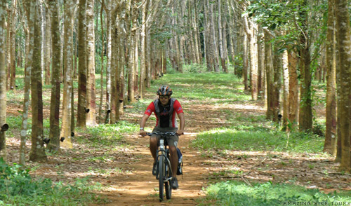 Cycle Bike Tours Thailand Phuket